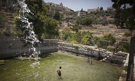 Palestinian children swim in the ancient spring in the West Bank village of Battir