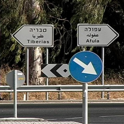 Pasolini pa* Palestine, à Marseille Provence 2013